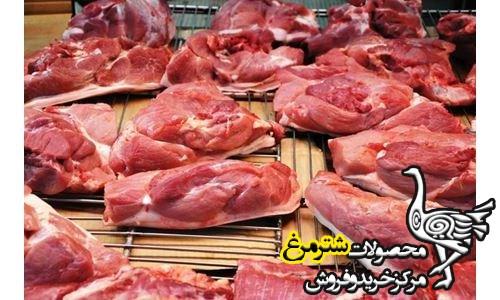 گوشت شترمرغ قیمت روز
