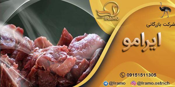 تولید بهترین گوشت شترمرغ
